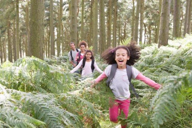 Excursiones educativas con niños
