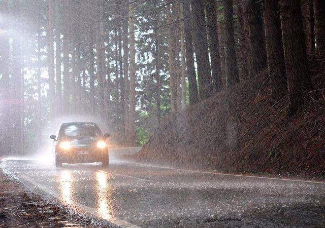 Consejos para conducir seguro en otoño