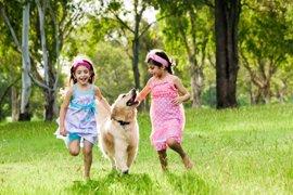 Claves para evitar que los perros muerdan a los niños