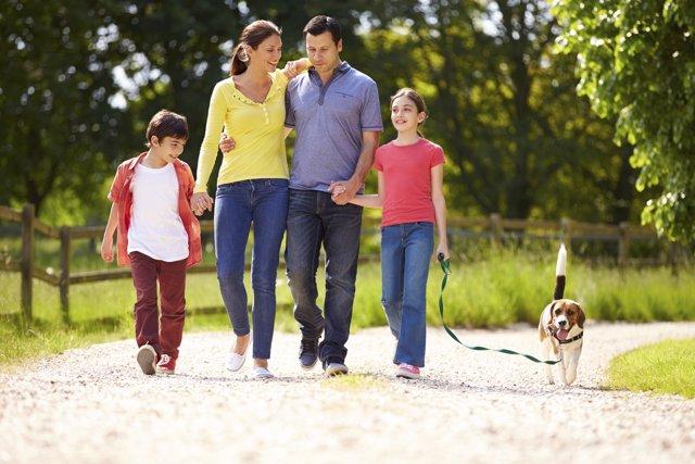 Claves de la comunicación en familia