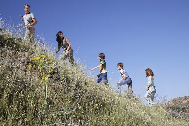 Las actividades al aire libre contribuyen a la mejora de la memoria.