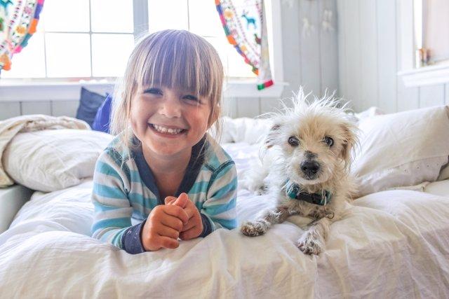 Compartir cuarto con una mascota puede ser una mala idea