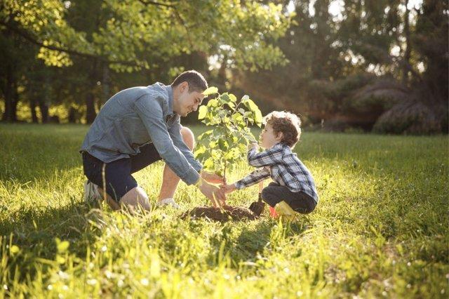 Cómo enseñar lo que significa cooperar en familia.