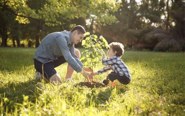 Cómo transmitir el valor de la cooperación en familia