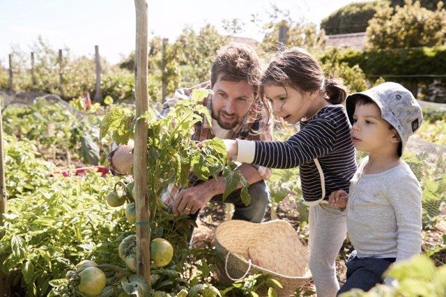Planes para el verano: granja escuela