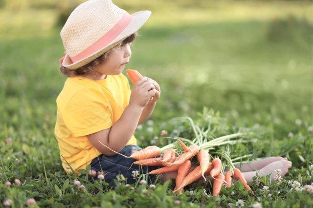 El verano como época para mejorar la alimentación de los niños.