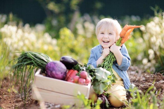 ¿Los Niños También Pueden Ser Veganos?