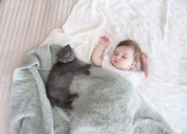 Animales y bebés