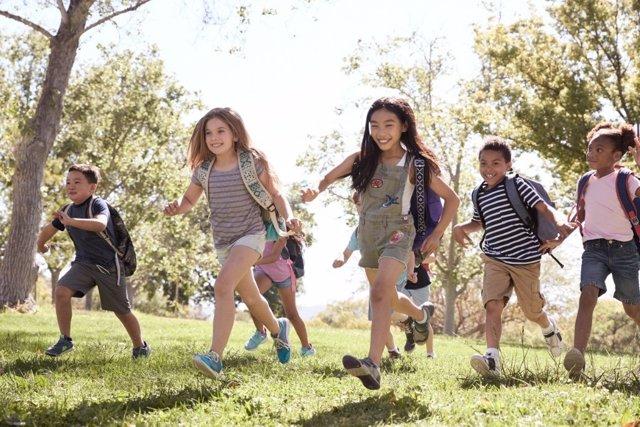 Excursiones y otras actividades que organiza el colegio