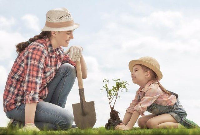 Aprender a cuidar el medio ambiente y valorar la naturaleza