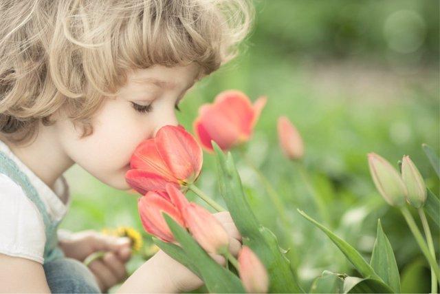 La importancia del olfato en la generación de recuerdos en la infancia